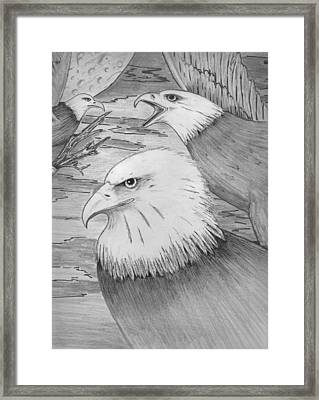 Haliaeetus Leucocephalus Named By Roger Swezey Framed Print by Richie Montgomery