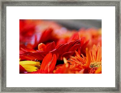 Hall Of Flame Framed Print