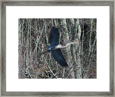 Framed Print featuring the photograph Hallelujah by Neal Eslinger