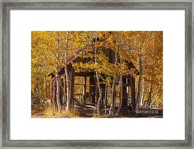 Hallowed Home Framed Print
