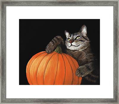 Halloween Cat Framed Print by Anastasiya Malakhova