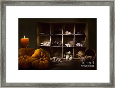 Halloween Collection With Candle Framed Print by Ann Garrett