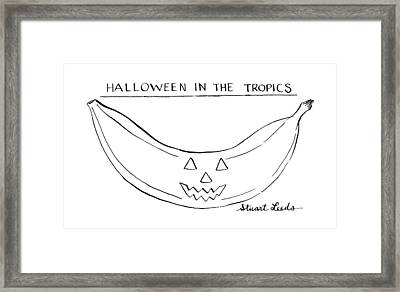 Halloween In The Tropics Framed Print by Stuart Leeds