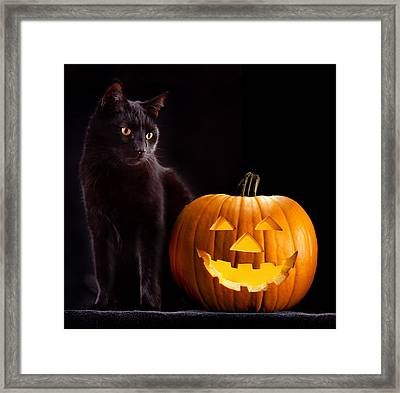 Halloween Pumpkin And Cat Framed Print