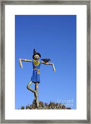 Halloween Revisited Framed Print