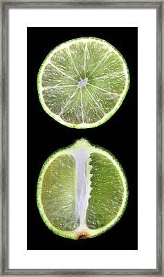 Halved Limes Framed Print