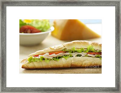 Ham And Cheese Sandwich Framed Print by Mythja  Photography