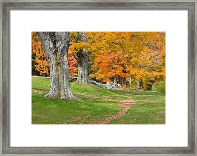 Hamilton Road Framed Print by Paul Miller