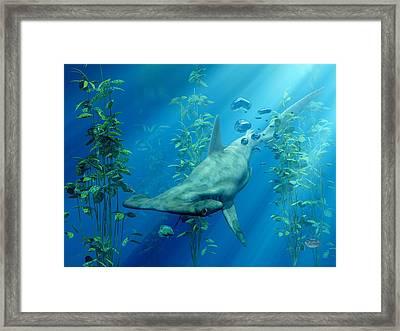 Hammerhead Art Framed Print
