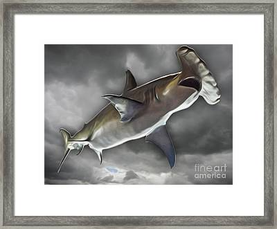Hammerhead Framed Print by Gregory Dyer