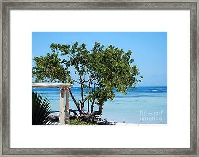 Hammock Stand On Playa Blanca Punta Cana Dominican Republic Framed Print