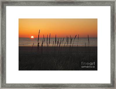 Hampton Beach State Park - Hampton New Hampshire Usa Framed Print by Erin Paul Donovan