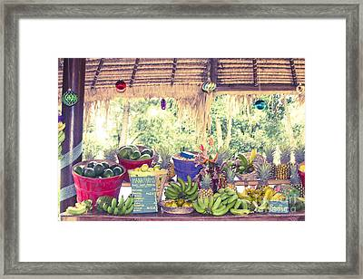 Hana Fresh Local Fruit Framed Print by Sharon Mau