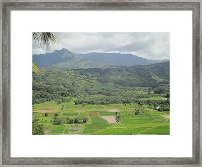 Framed Print featuring the photograph Hanalei by Alohi Fujimoto