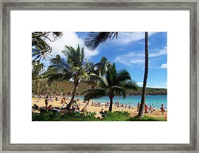 Hanauma Bay Beach Framed Print by Kenneth Cole