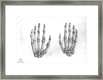 Hand Drawn Framed Print