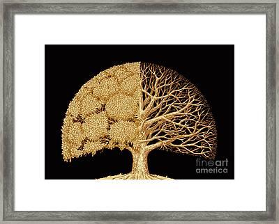 Hand Drawn Sketch Tree. Environmental Framed Print