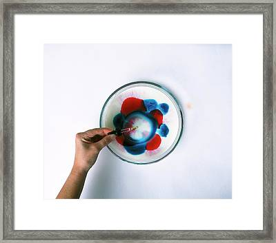 Hand Dropping Detergent In Dish Framed Print
