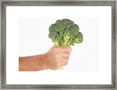 Hand Holding Broccoli Framed Print by James BO  Insogna