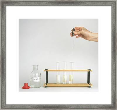 Hand Holding Pipette Above Rack Framed Print