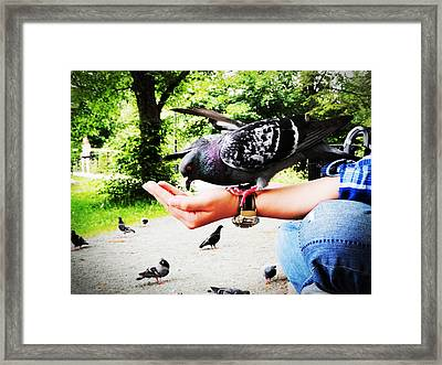 Framed Print featuring the photograph Handful Happiness by Zinvolle Art