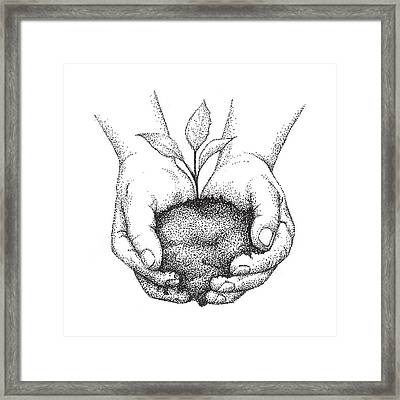 Hands Holding Seedling Framed Print by Christy Beckwith