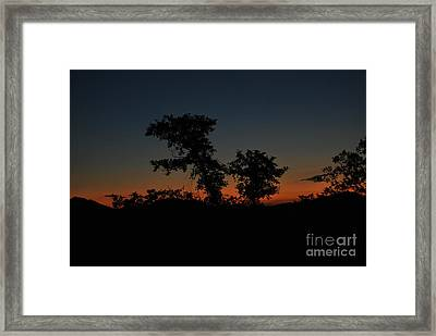 Sense Of Freedom Framed Print