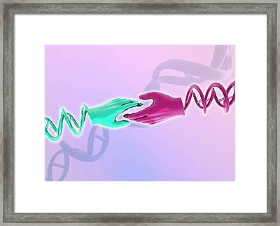 Hands With Double Helix Framed Print by Victor Habbick Visions