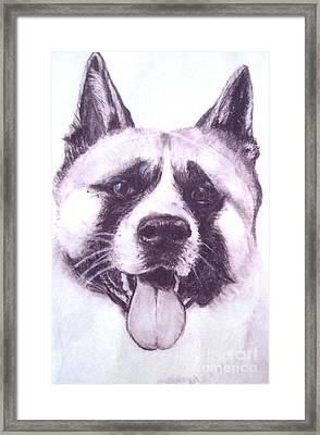 Framed Print featuring the drawing Handsome Akita by Lucia Grilletto