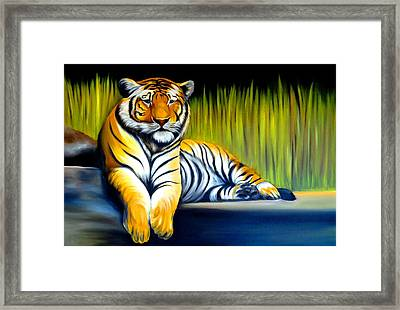 Handsome Tiger Framed Print