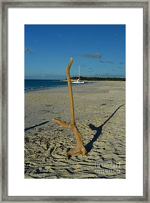 Handstand Framed Print by Judy Wolinsky