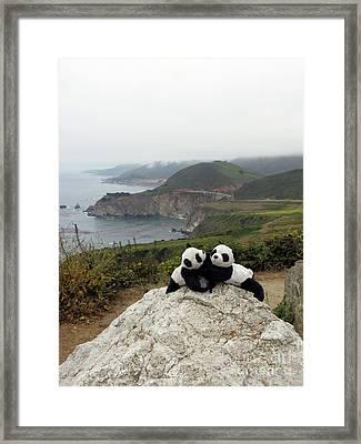 Framed Print featuring the photograph Hang On- You Got A Friend by Ausra Huntington nee Paulauskaite