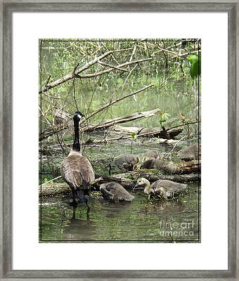 Hangin Out With Mom Framed Print by Sara  Raber