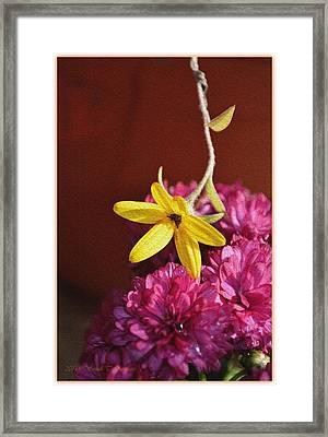 Hanging Beauty Framed Print
