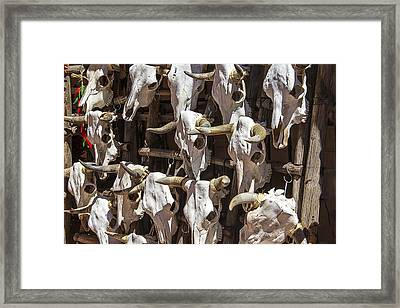 Hanging Cow Skulls Framed Print by Garry Gay