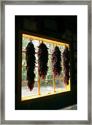 Hanging Dried Red Chilies Backlit Framed Print by Julien Mcroberts
