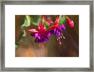Hanging Flower Basket Framed Print