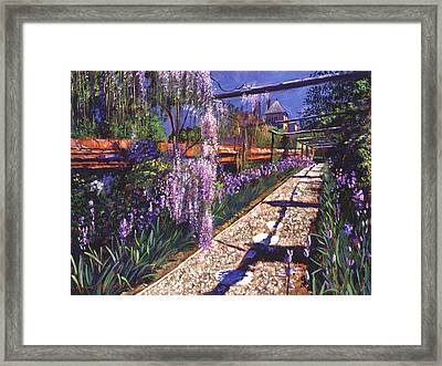 Hanging Garden Framed Print by David Lloyd Glover