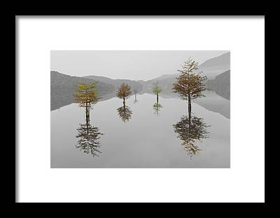 Benton Framed Prints