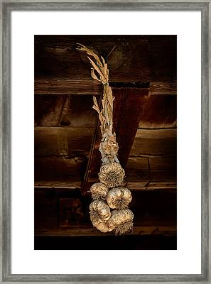 Hanging Garlic Framed Print