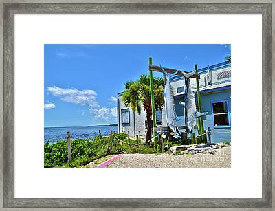 Framed Print featuring the photograph Hanging In Matlacha Florida by Timothy Lowry