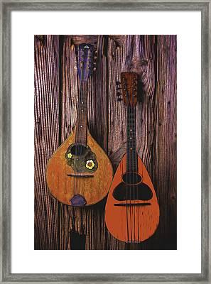 Hanging Mandolins Framed Print