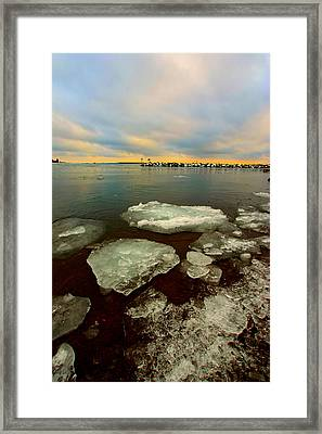 Framed Print featuring the photograph Hanging On by Amanda Stadther