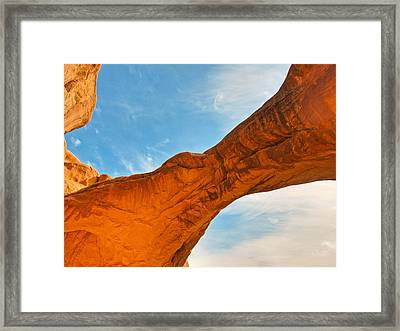 Hanging On For Life Framed Print