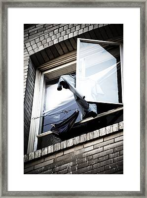 Hanging Out Framed Print by Ian Wilson