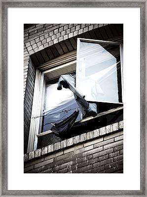 Hanging Out Framed Print