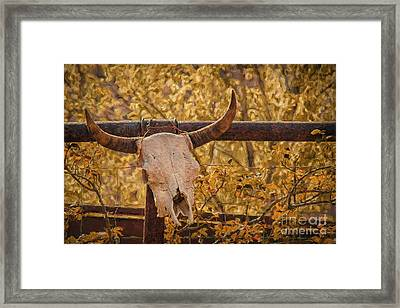 Hanging Out In Jerome Framed Print by Priscilla Burgers