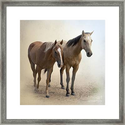 Hanging Out Together Framed Print by Betty LaRue