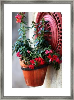 Hanging Red Flowers Framed Print