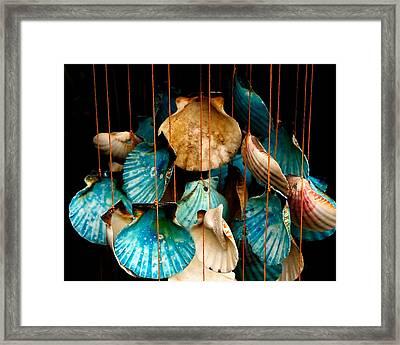 Hanging Together - Sea Shell Wind Chime Framed Print by Steven Milner